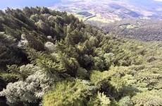 Video incredibile: volo sulle Alpi con tuta alare