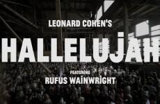 1500 Coristi Cantano Hallelujah di Leonard Cohen: il risultato è di una Bellezza Unica! VIDEO