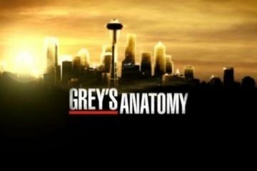 Grey's Anatomy 14: le anticipazioni